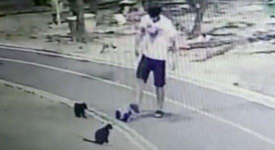 Homem mata vários gatos e câmeras de segurança registram crueldade no Recife