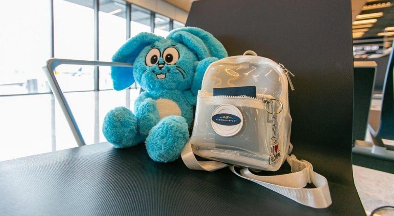 Coelho azul foi enviado para a dona com ajuda de empresa aérea