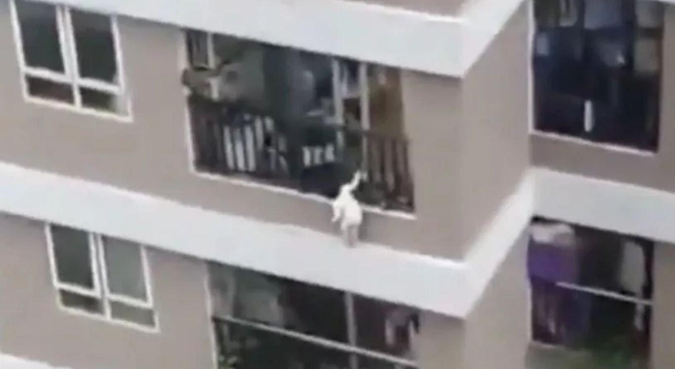 Criança caiu de 12º andar de prédio