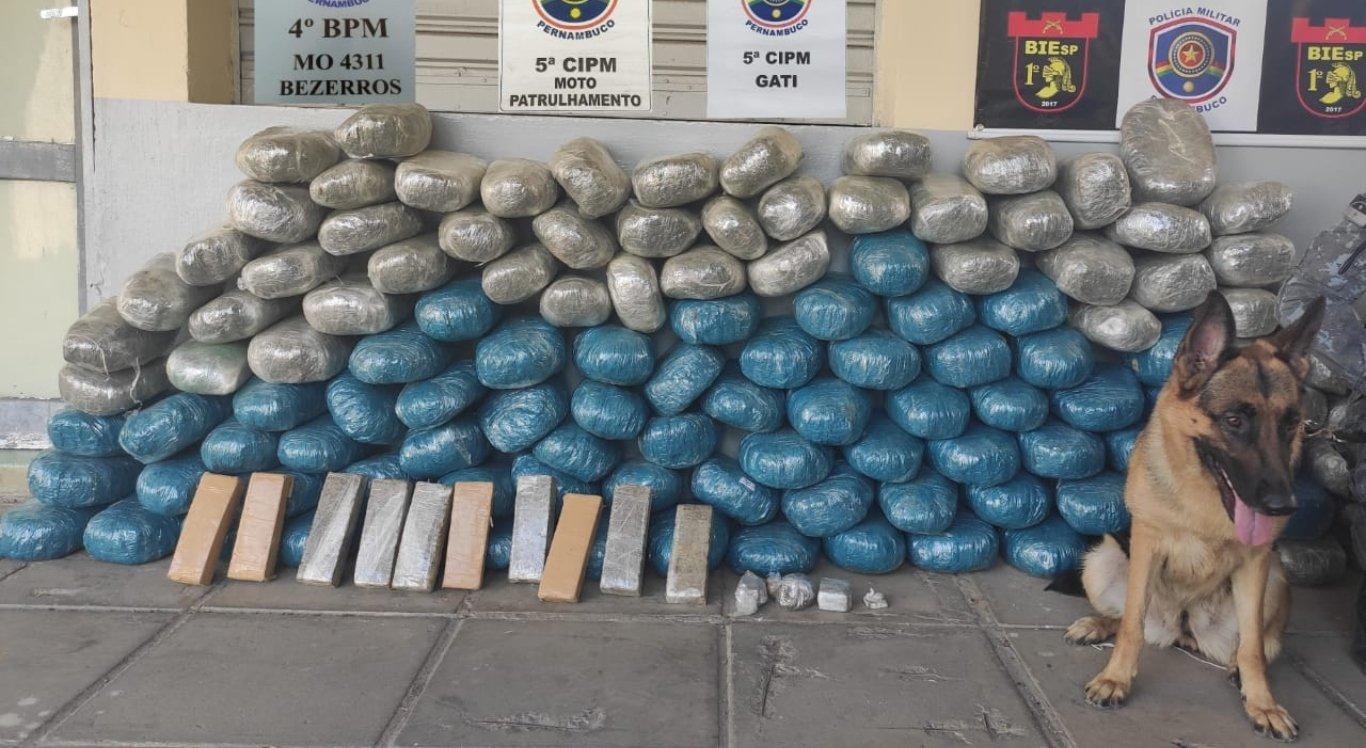Polícia apreende aproximadamente 131 kg de maconha no Agreste