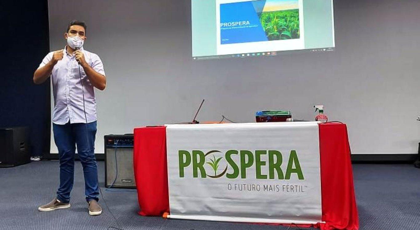 Projeto usa tecnologia para cultivo de milho de alto rendimento em Bom Jardim