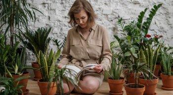 Na Imaginarium, loja do RioMar Recife, os utensílios de jardinagem se destacam