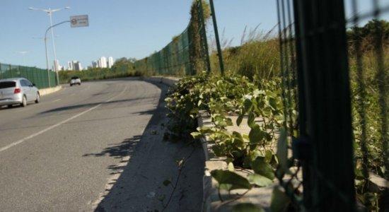 Prefeitura do Recife vai gastar mais de R$ 1,1 milhão para repor gradis roubados da Via Mangue