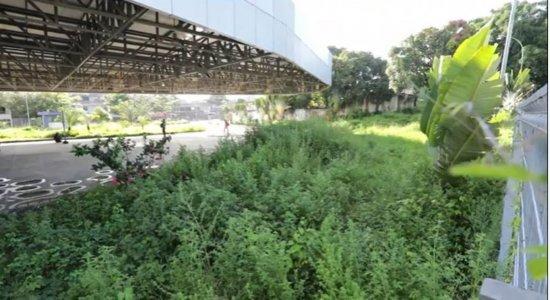 Terminal Integrado Cosme e Damião, na Zona Oeste do Recife, sofre com abandono e acumula problemas