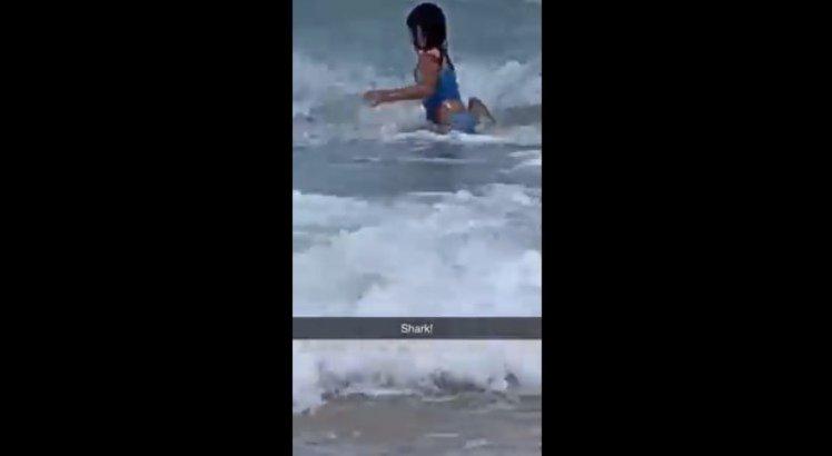 VÍDEO: Mãe flagra momento em que filha de 6 anos fica cara a cara com tubarão