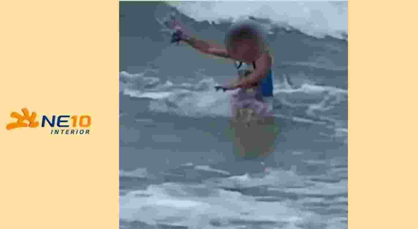 Menina daá de cara com tubarão no Havaí