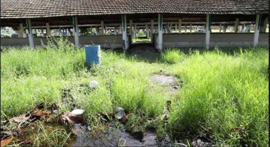 Parque de Exposições do Cordeiro sofre com abandono, estruturas quebradas e sujeira
