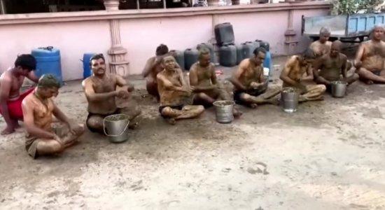 Médicos pedem que pessoas não usem esterco bovino contra covid-19 na Índia; veja vídeo