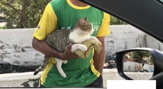 O homem pedia dinheiro em troca de carinho no felino e formou uma fila de carros