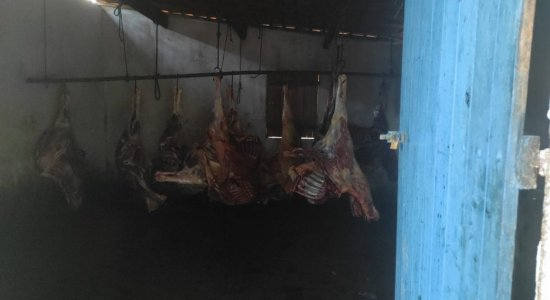 Operação apreende quatro toneladas de carne clandestina em Limoeiro