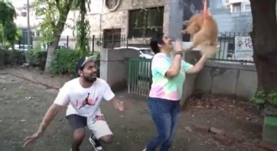 O youtuber foi preso pela gravação do vídeo com o cachorro