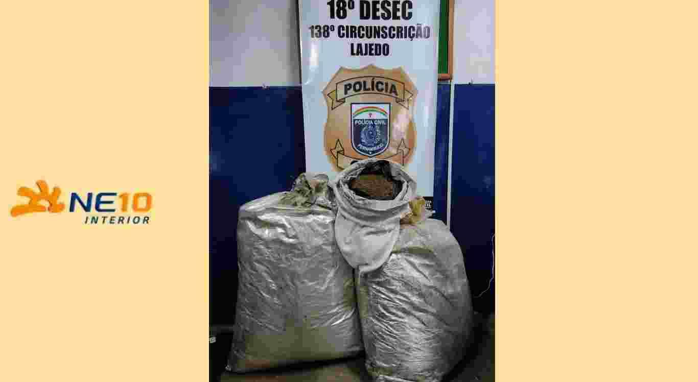 Polícia Civil apreende 54kg de maconha em Lajedo