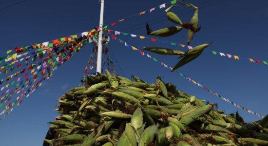 Na semana do São João, Plantão do Milho atrai consumidores e comerciantes no Ceasa