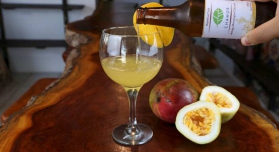 Kombucha: conheça a bebida com mais de 70 benefícios à saúde e saiba como fazer em casa