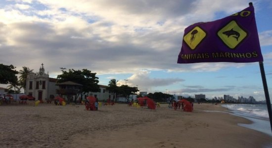 Após interdição de trecho da praia de Piedade, barraqueiros de Jaboatão receberão auxílio de R$ 180