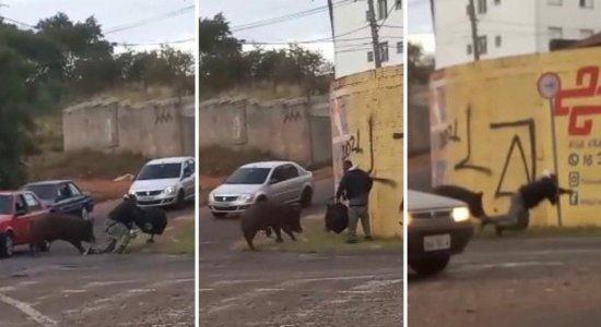 VÍDEO: Homem é atacado por porco no meio da rua e sofre ferimentos nas nádegas
