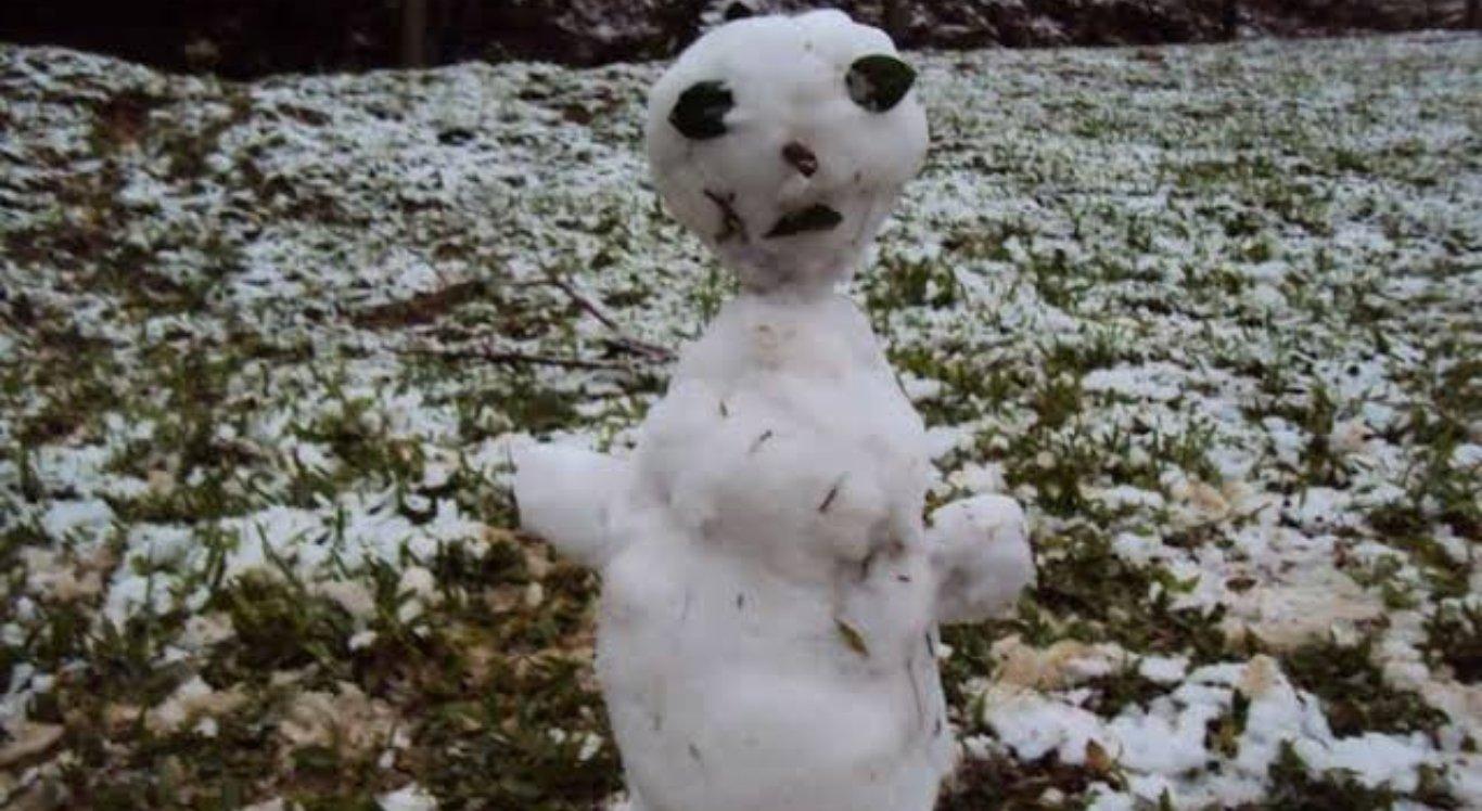 Após nevar no sul, bonecos de neve brasileiros viram meme