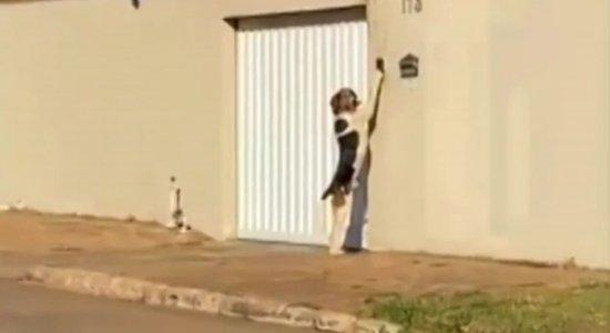 Família descobre que cachorro tocava campainha da casa; veja vídeo