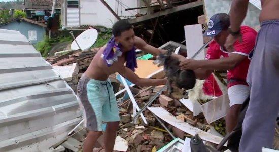 Cachorro é encontrado com vida após ficar soterrado por 12 horas no Recife; veja momento do resgate