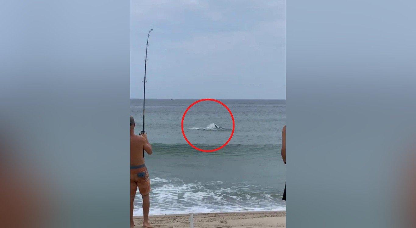 """O vídeo mostra o momento exato em que o homem """"pesca"""" o tubarão"""