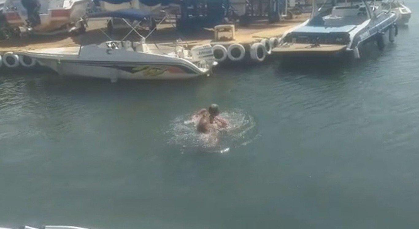 O homem foi atacado por uma capivara no lago