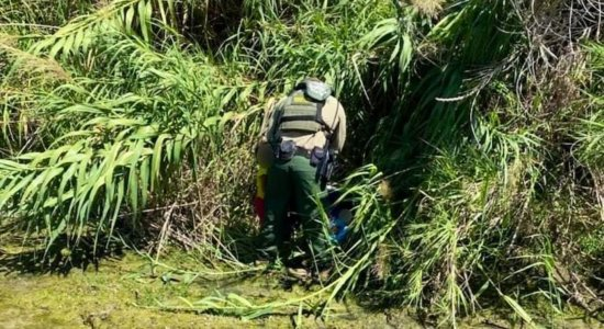 Uma menina e um bebê de colo foram encontrados por agentes