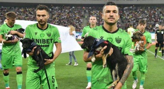 Jogadores entram em campo com cachorros abandonados para promover adoção de animais