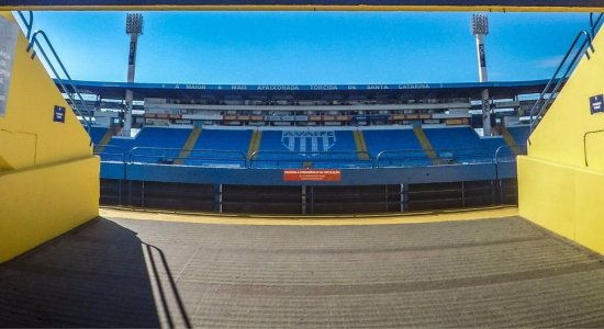 Avaí x Cruzeiro: saiba onde assistir ao vivo, escalações, desfalques e informações da partida