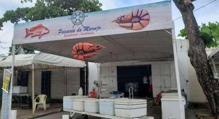 Semana Santa 2020 registra queda na venda de peixes no Grande Recife, em meio à crise do coronavírus