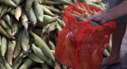 Vendas de milho na Ceasa, nesta quinta-feira (4)