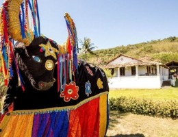 Organização do festival Macuca das Artes anunciou a data da sua próxima edição