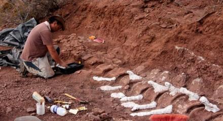 Paleontólogo durante uma escavação em que fósseis de 98 milhões de anos foram encontrados, na Formação Candeleros no Vale do Rio Neuquen, no sudoeste da Argentina