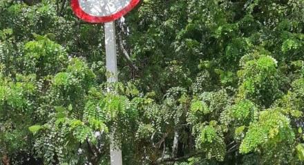 Placa de sinalização na Praça Souto Filho está quebrada
