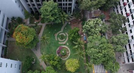 Vista aérea do jardim interno da Unicap