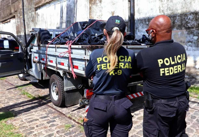 Divulgação/PF