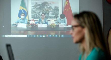 ENCONTROS Isabella de Roldão, vice prefeita do Recife, consulados