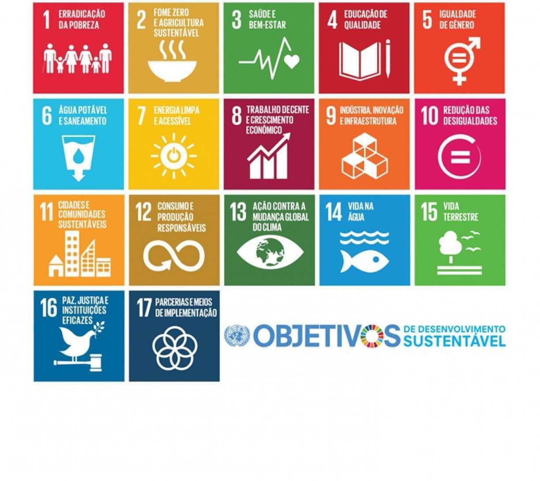 Saiba como contribuir com o desenvolvimento sustentável e ajudar no combate à covid-19