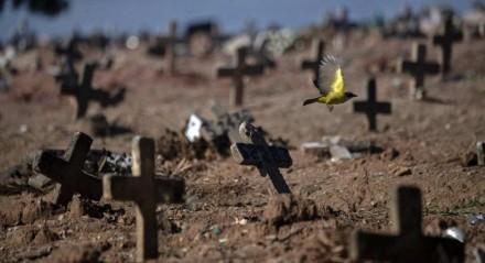 Brasil somou 2.595 mortes por covid-19 nesta sexta-feira (30), totalizando 82.266 óbitos em abril