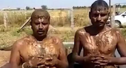Indianos ferem a orientação mundial da saúde nos rituais do banho de estrume de vaca