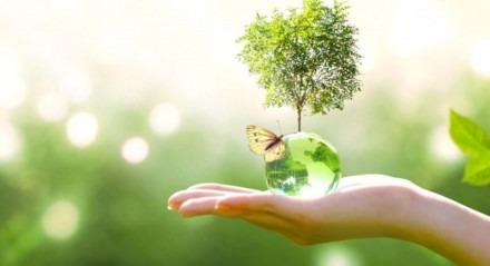 Quando estudamos ecologia, percebemos a importância de cuidar do meio ambiente.