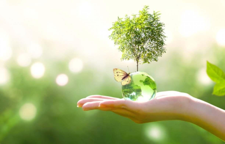 Oficina gratuita ensina a ter cuidado com si mesmo e o meio ambiente