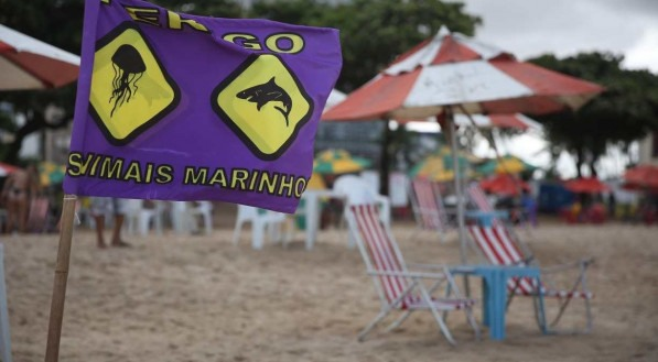 Palavras-chave: Tubarão - Ataque - Recife - Jaboatão - Igrejinha - Bombeiro - Banhista - Praia ##
