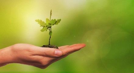 """""""Cias já estão conscientes de que os ganhos pela adoção de políticas socioambientais se traduzem em redução das fragilidades e dos riscos empresariais"""""""