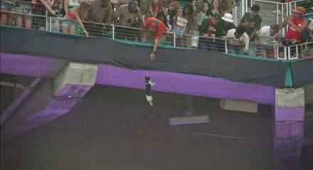 O Hard Rock Stadium tuitou que o estádio fez uma doação para a sociedade protetora de Miami para comemorar o resgate do gato