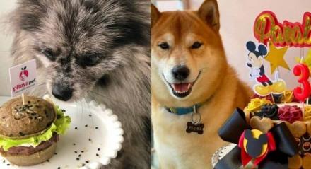 Da esquerda para a direita, cadela comendo hambúrguer para pets e cachorro ao lado de bolo de aniversário