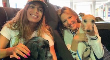 A cantora Anitta adotou alguns de seus cachorros no Instituto Luisa Mell, ONG com a qual a artista tem contribuído para conscientizar e promover campanhas de adoção