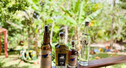 Três das quatro bebidas que são produzidas no Engenho Sanhaçu estão participando do ranking que vai indicar as melhores cachaças do Brasil