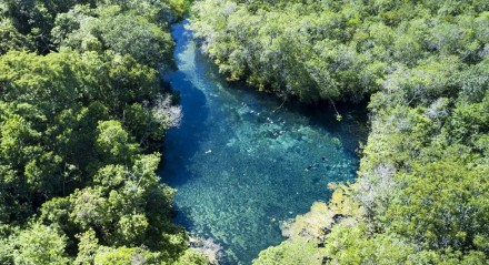 A flutuação nos rios é um dos principais atividades que podem ser realizadas em Bonito.