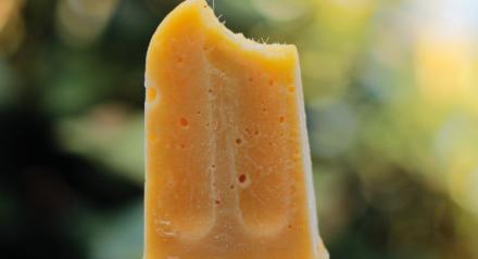 Picolés são ótimas alternativas para aliviar o calor de pets no verão