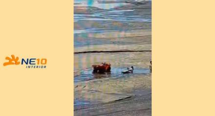 Mulheres atolam em obra de ampliação de faixa de areia